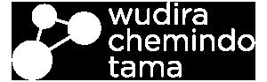 chemindo_logo_white
